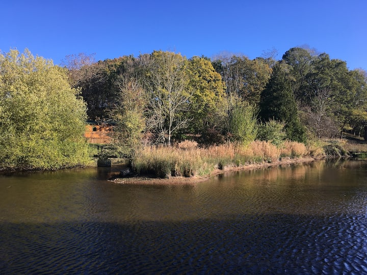 The Deer Leap, Lakeside, Woodland Lodge.