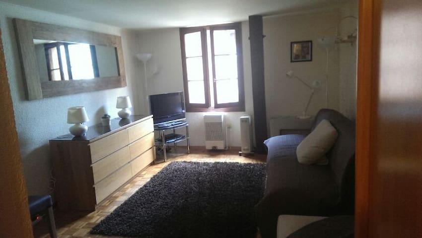 Lovely little studio center Geneva - Geneva - Apartment