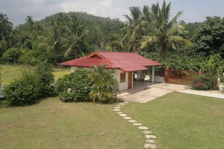 Bungalow + Rice field +Coconut tree - Mueang Phan