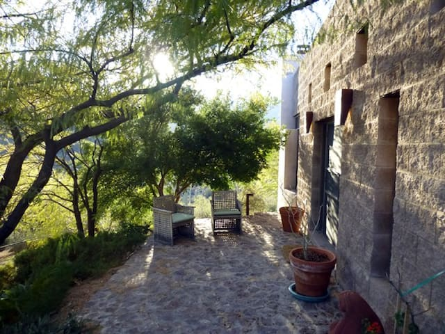 Japanese Garden/Ofuro cedar tubTucsonMt Guesthouse