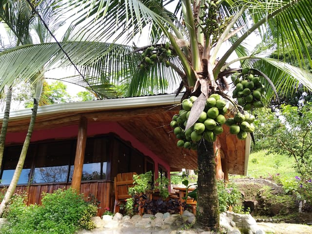 Arroyo Cottage Forest Home 40min to Manuel Antonio