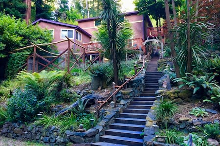 Lagunitas Creek and Redwood Forest Home