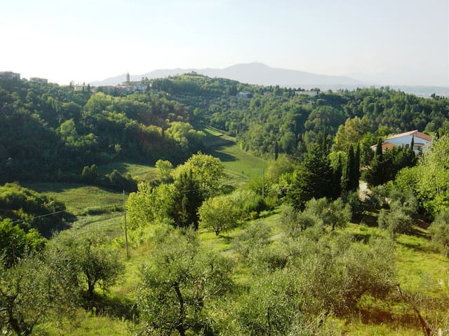 Tuscan relaxing countryside for You - Montopoli in Val D'arno