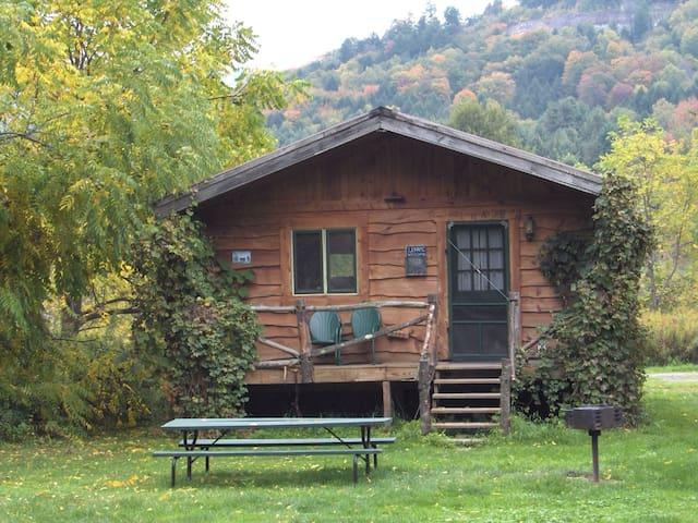 """Catskill Rustic Cozy """"Unami"""" Cabin - Downsville - Бунгало"""