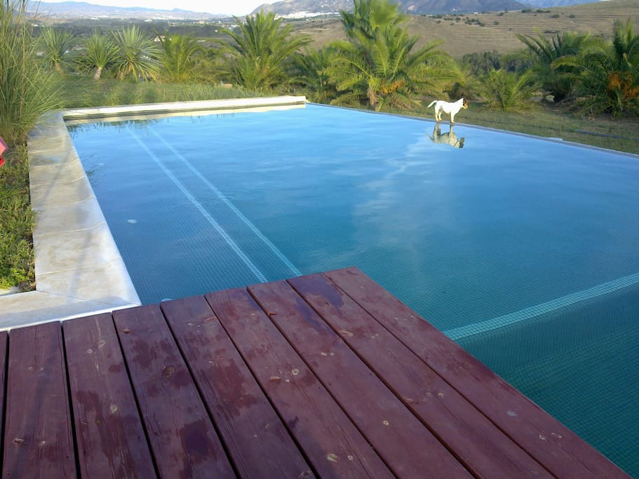 In Andalusian hills; the Studio