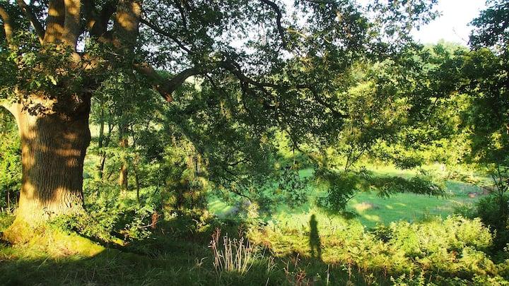 Gîte nature à la ferme Amets Politak