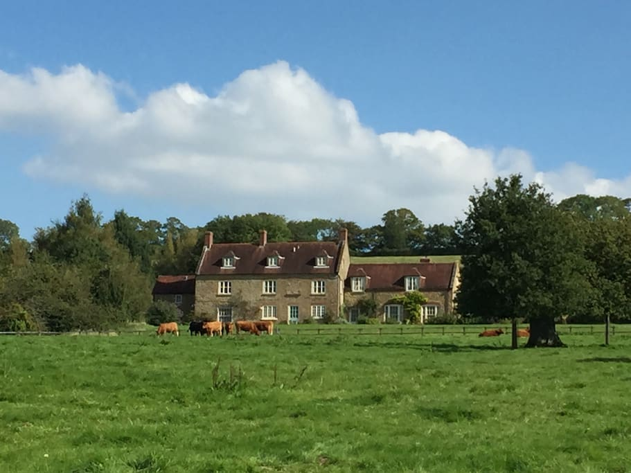 View of house from Homeground Field in front of house