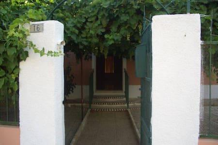 Un oasis de tranquilidad en familia - Albatana