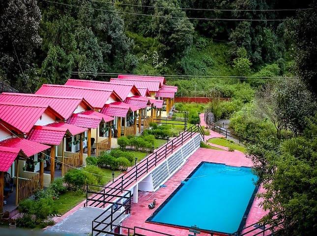 Exquisite Beauty in Nainital/Uttarakhand