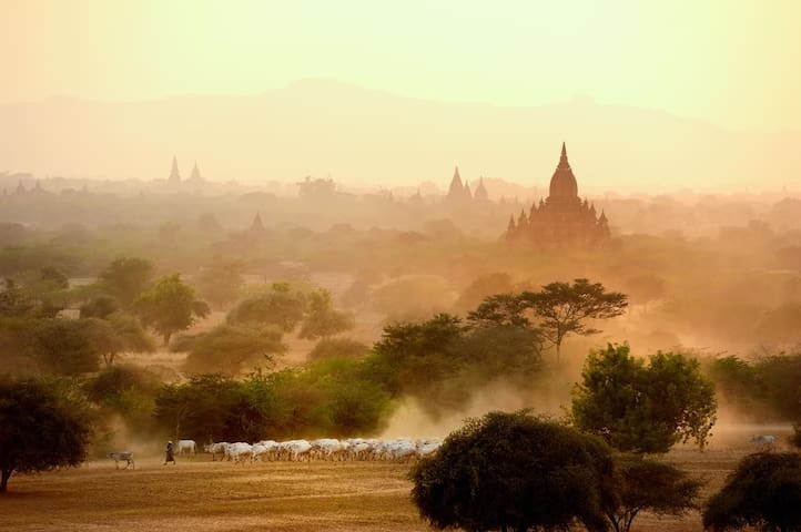 Heart of Myanmar ( Bagan Y ) 2BD/1R