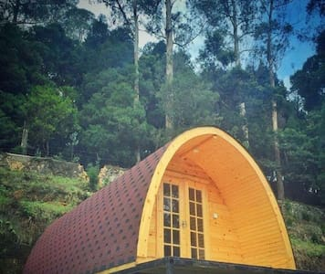 It is a podhouse,located opposite to waterfalls...