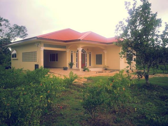 Vakantiehuis Out of Paramaribo - Domburg - Huis