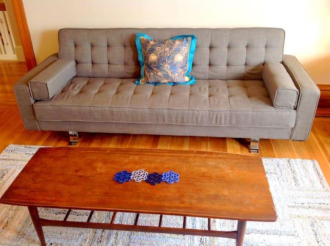 living room with new sleeper sofa