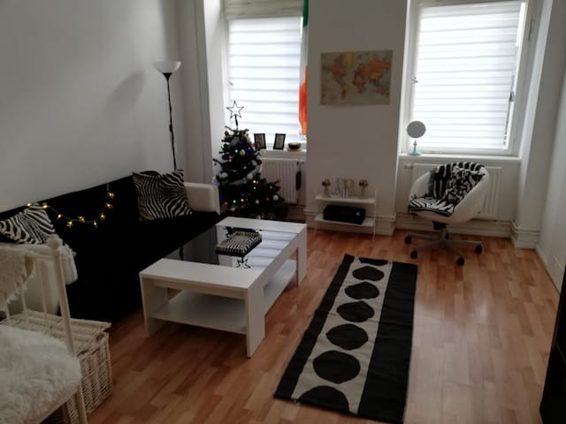 whole apartment in a great location!Christmadeco🎅