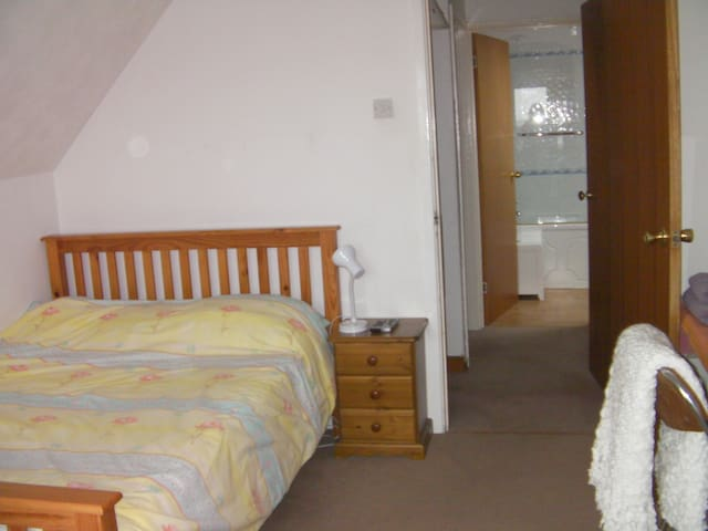 South facing cosy double bedroom  - Sketty - Bed & Breakfast