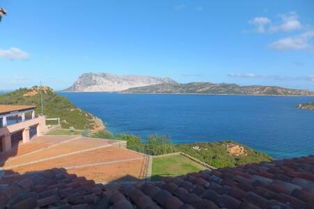 Mono Fantastico 3,stunning views - Capo Coda Cavallo