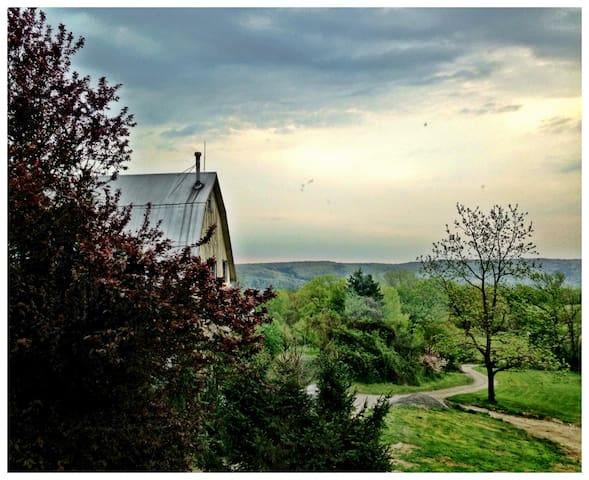 100 ac. Orchard & Flower Farm House - Newfield - Hus
