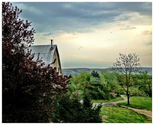 100 ac. Orchard & Flower Farm House - Newfield - Casa