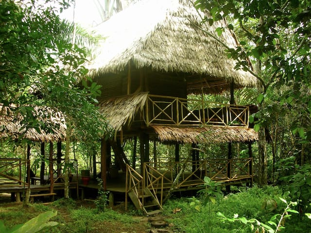 Amazon Natural Reserve Bed&Trees - Iquitos - Casa