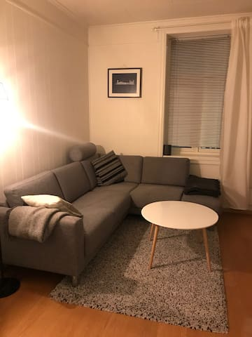 Cozy central apartment in Trondheim.