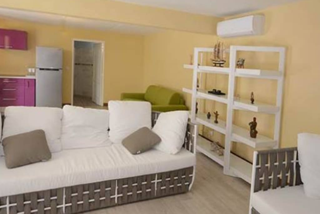 Le séjour avec son salon et son canapé lit