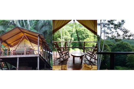 Tree House Rainforest Glamping