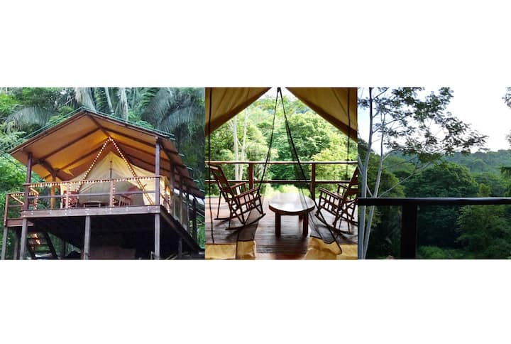 Tree house Rainforest Family Glamping