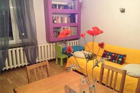 Flat in center best price - Warschau - Wohnung