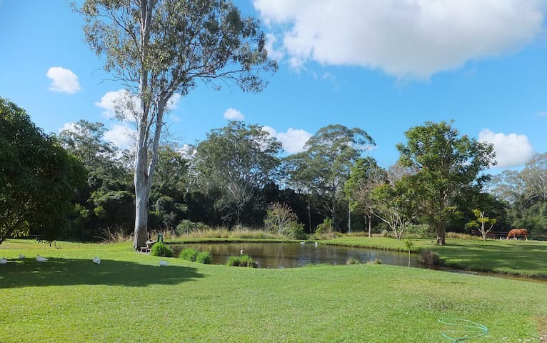 Caboolture Qld 4.5 star Holiday Home - Caboolture  - Rumah