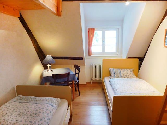 Historische Sägemühle - Furtwangen - Appartement