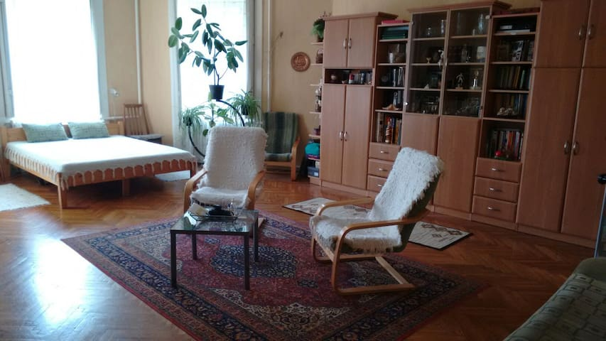 Spacious Bedroom+Living rm 2 beds • Friendly Home - Sülysáp - Hus