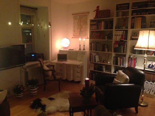 Fin lejlighed centralt i Aarhus - Aarhus - Apartament