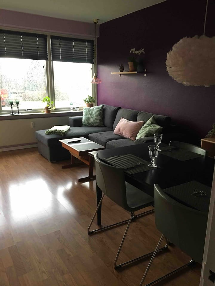 Cozy and bright apartement close to Cph Center