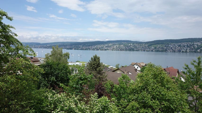 2.5 room apartment with lake view, near Zurich