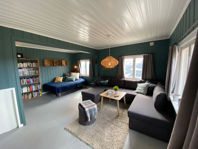 Stue med 120-seng og sovesofa (150 bred)
