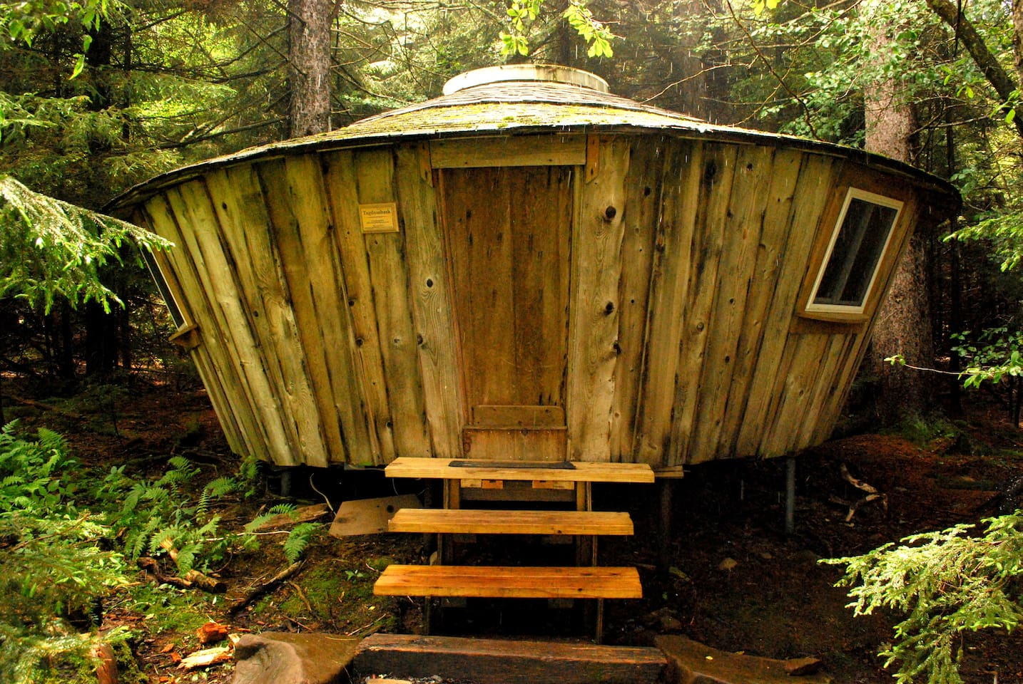 The rustic guest yurt Tagdumbash is nestled on the edge of the forest, just off a meadow. While still secluded it offers the easiest access to bathing facilities.