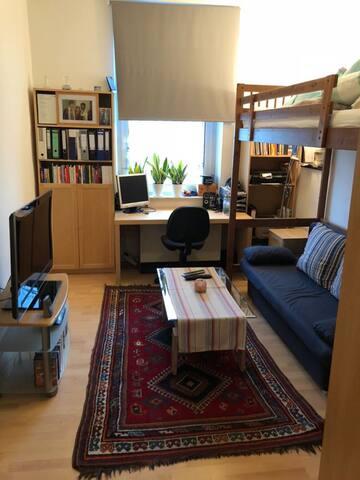 Gemütliches Zimmer nahe Hbf und Uni