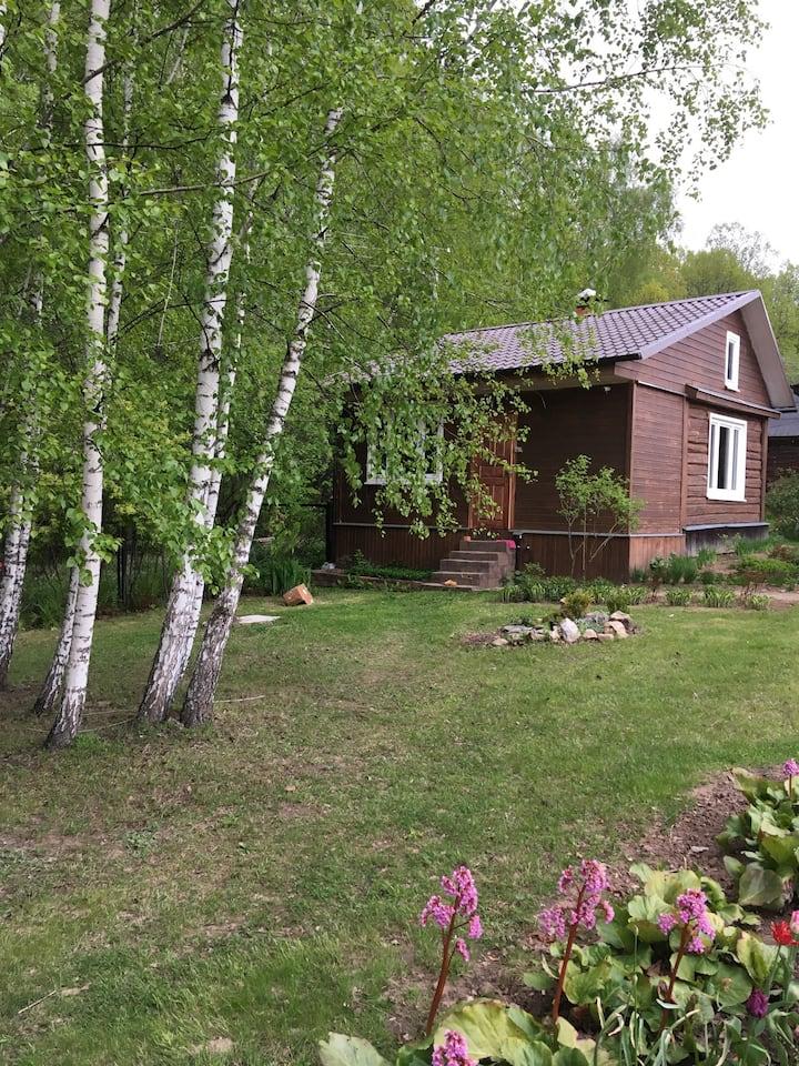 Отдельный домик в лесу, на Оке.