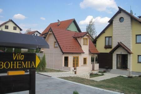 De lux apartments Bohemia for rent - Lakás