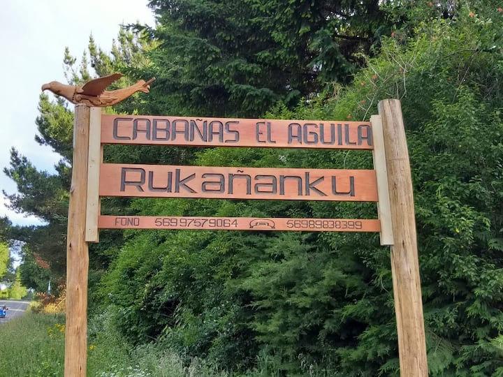 (2) Cabaña en Licanray 6 personas, bello entorno.