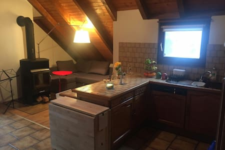 Cosy apartment with wooden ceiling - Reinach - Daire