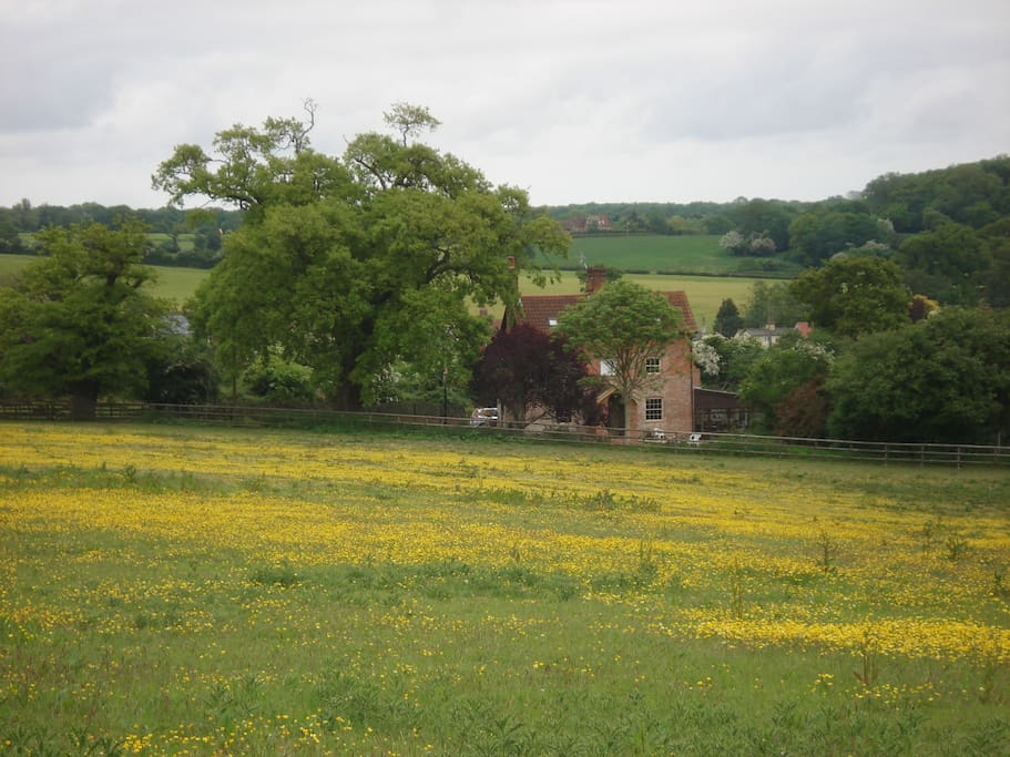 Set in six acres of lovely countryside