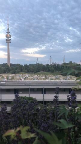 Wohnung beim Olympiapark, München