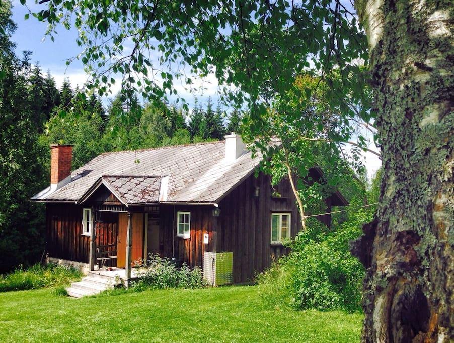 Bj rntomta houten huisje te huur in tasebo v rmland zweden for Klein huisje in bos te koop