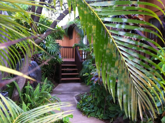 Aloha Studio - Steps to the beach - Kihei - Apartment