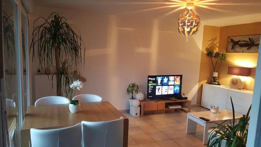 Joli T3 spacieux en Haute-Savoie - Bonneville - Wohnung