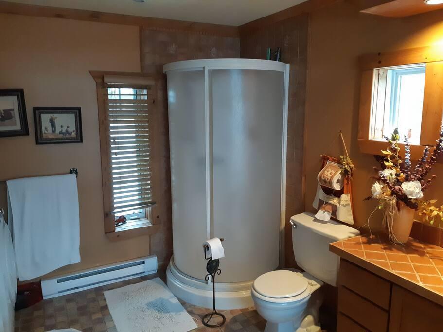 salle de bain principale vue douche...