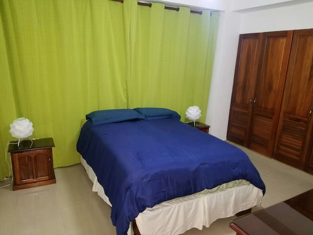 Great Room with confortable bed. - Santo Domingo - Leilighet