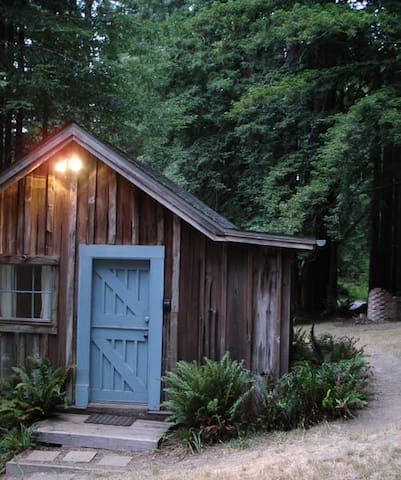 Cabin in redwood giants! Hot tub!