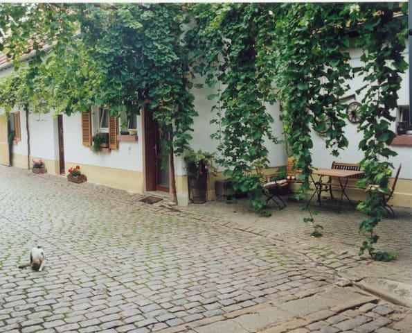 Winzerhof Fewo II - Essingen - アパート